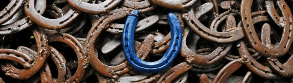 Blue Horseshoe in center of steel horseshoes